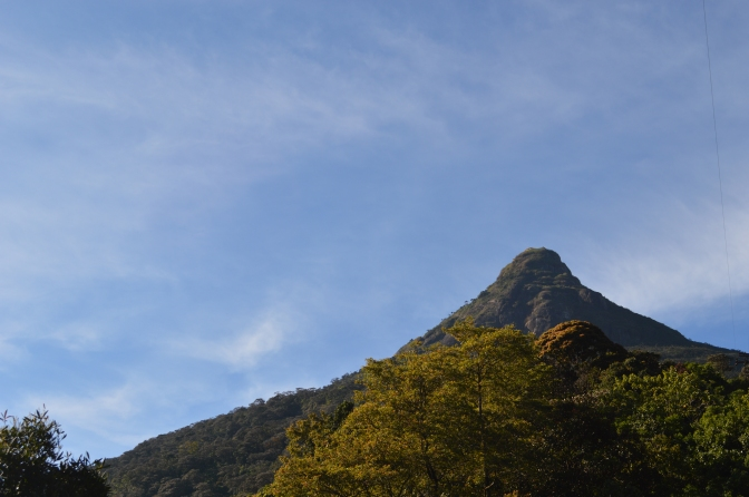 Tips for Hiking Adam's Peak